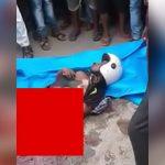 【閲覧注意】事故で内臓がごっそり飛び出て死亡した男性のグロ動画。