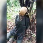 【閲覧注意】森の中で見つかった、顔が白骨化した人間の死体を撮影したグロ動画。