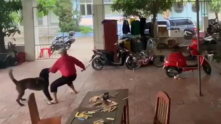 優秀過ぎる番犬、襲撃に来た男の左腕に噛み付いて返り討ちにする映像。