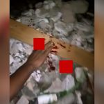 【閲覧注意】泥棒の男の指をマチェーテで切断するグロ動画。
