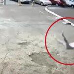 【閲覧注意】窓を拭いていた女性、転落して地面に激突する瞬間映像。