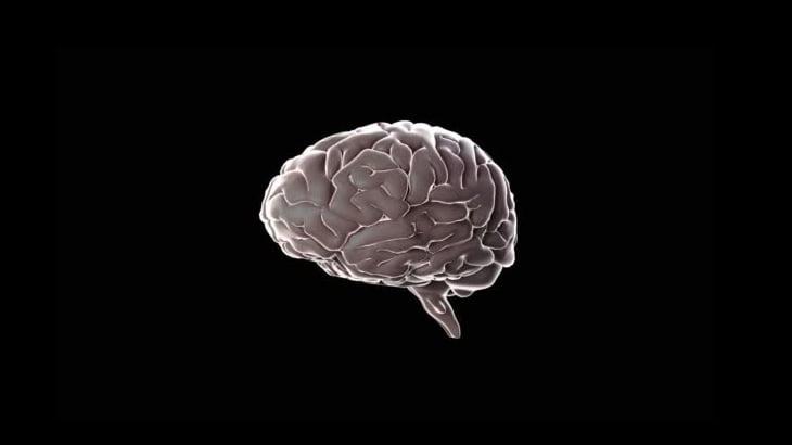 【閲覧注意】バイク事故で頭から脳が丸ごと外に飛び出してしまったグロ動画。