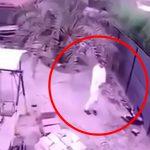【衝撃映像】突然、地面にボッシュートされてしまう男性。