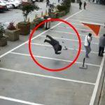 【衝撃映像】飛び降り自殺した男性が地面に激突してバウンドする映像。