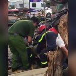 【閲覧注意】自動車事故現場でグチャグチャになった死体を回収するグロ動画。