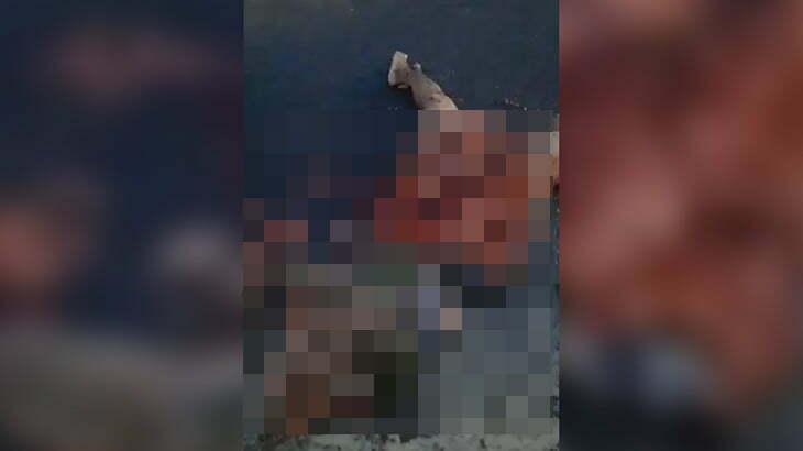 【閲覧注意】トラックのタイヤで上半身をペチャンコにされてしまった女性のグロ動画。