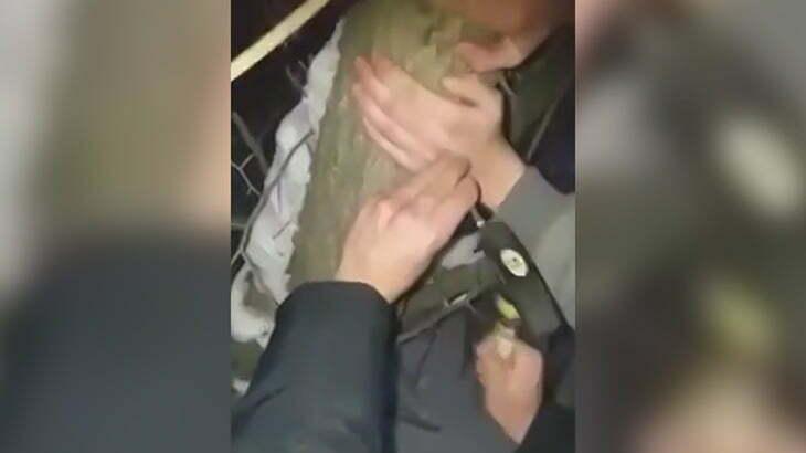 両手を釘で木に打ち付けられてしまう男の映像。