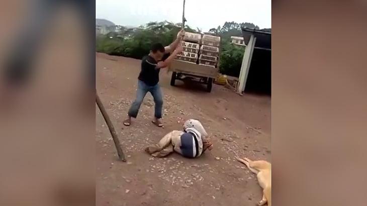 犬を盗もうとした男、罰として棒で叩かれまくる映像。