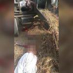 【閲覧注意】農業用の機械に巻き込まれて頭と右腕がちぎれてしまった男性のグロ動画。