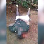 【閲覧注意】森の中でハゲタカに食われていた男性の死体映像。