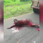 【閲覧注意】トラックに轢かれて左腕を切断、左脚を抉られて苦しむ男性のグロ動画。