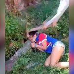 【閲覧注意】鍬で頭を何度も刺されて殺される女の子のグロ動画。