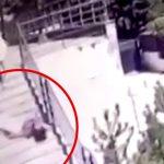 空から降ってきた窓枠にデスフロムアバブされてしまった男性の映像。