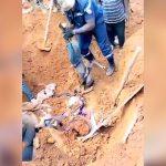 【閲覧注意】殺されて埋められた家族の遺体を回収するグロ動画。