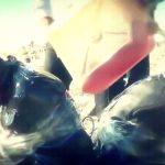 【閲覧注意】捕虜の2人の男性が爆弾で木っ端微塵にされるグロGIF画像。