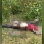 【閲覧注意】森の中でほぼ白骨化した状態で見つかった死体映像。