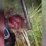 【閲覧注意】頭に斧を突き刺されてしまう男のグロ動画。