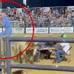 椅子に座っていた男が闘牛に突き飛ばされてしまう映像。