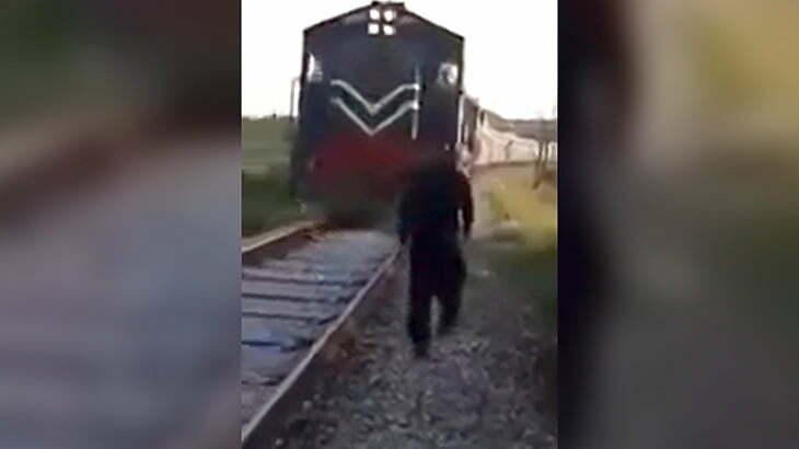 向かってくる列車をバックに撮影してもらってた男が思いっきり轢かれてしまう映像。