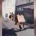 3人の泥棒が罰として全裸にダンボール被って街を走らされる映像。
