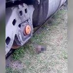 【閲覧注意】電車に自分の首を切断させて自殺した男の死体映像。