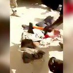 【閲覧注意】斧とマチェーテで首を切断されてしまうグロ動画。