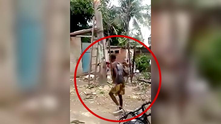 木を切断する現場で折れた木にぶつかって死亡してしまった男性の映像。