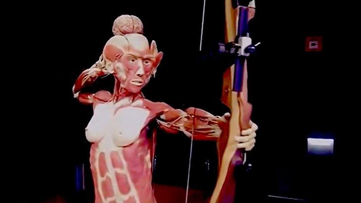 【閲覧注意】人間の死体を展示物に変えるアート映像。