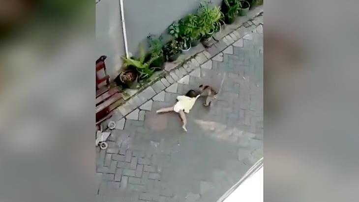 小さな女の子がサルに引きずられてしまう映像。