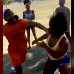 パンチが的確過ぎる女の喧嘩映像。