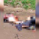 【閲覧注意】事故で胴体ズタズタに轢き裂かれてしまった男性の死体映像。