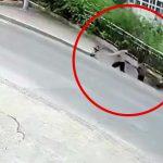 歩道が突然陥没して2人の女性が巻き込まれてしまう映像。