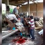 【閲覧注意】木を粉砕する機械に巻き込まれて死んでしまった作業員の映像。