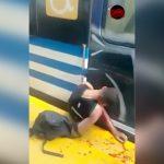 【閲覧注意】スマホを盗んで逃げようとして電車とホームに挟まってしまった男の映像。
