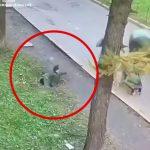小さな男の子がマンホールにボッシュートされてしまう映像。