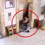酔っ払った2人の男性がエレベーターシャフトに転落してしまう映像。