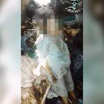 【閲覧注意】ミイラ化した死体が積み上げられたグロ動画。