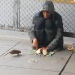 ネズミを意のままに操る男の映像。