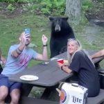 人と一緒に椅子に座ってオヤツを食べる飼い慣らされまくったクマの映像。