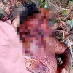 【閲覧注意】森の中で見つかった顔をグチャグチャにされた男性の死体映像。