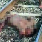 【閲覧注意】バラバラになった男性の死体をなぜか笑いながら集めるグロ動画。