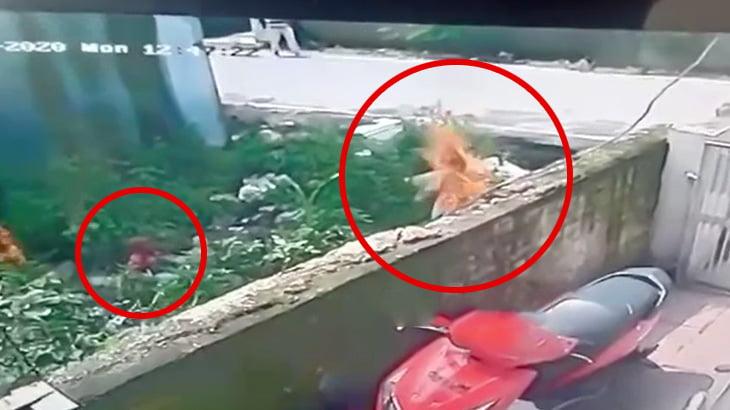 突然火だるまになってしまう母親とそれを見つめ続ける子供の映像。