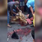 【閲覧注意】事故で頭がグチャグチャになった死体を回収するグロ動画。