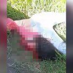【閲覧注意】事故で頭がちぎれてしまった女性の死体映像。