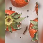 買ってきたイチゴを塩水で洗ってみた結果、とんでもない量の虫が這い出してくる映像。