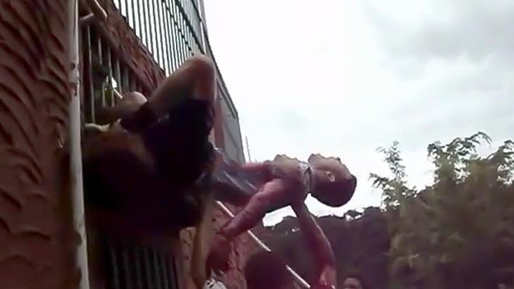 【閲覧注意】檻越しにライオンに襲われて流血する男の映像。