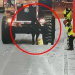 バックするブルドーザーの前を歩いていた男性が轢かれてしまう映像。