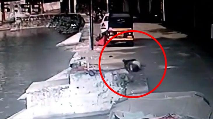 酔っ払った男が路上で寝てたら池に落ちて死んでしまった映像。