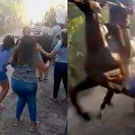 馬のレースにテンション上がりすぎた女さん、コースに飛び出して轢かれてしまう映像