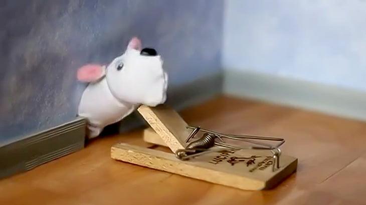 チンチンにネズミを模したフードを被せてネズミ捕りでパチンとする映像